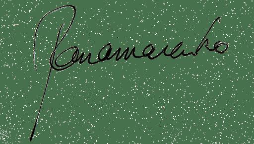 signature PANAMARENKO
