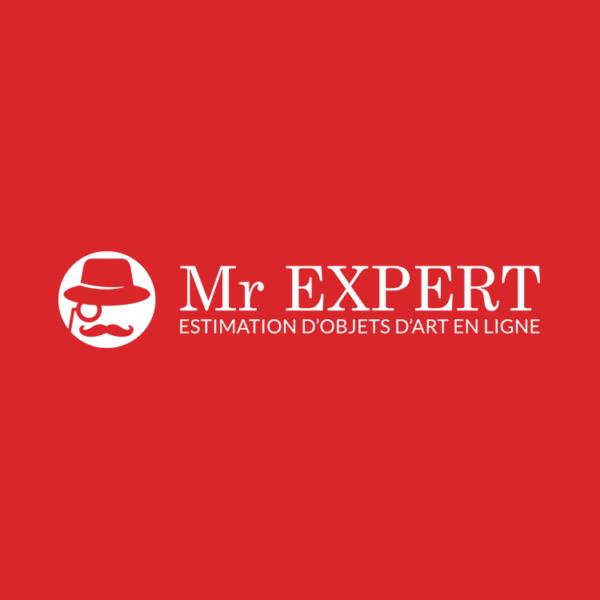 Mr Expert