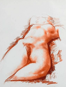 Dessin Antoniucci Volti
