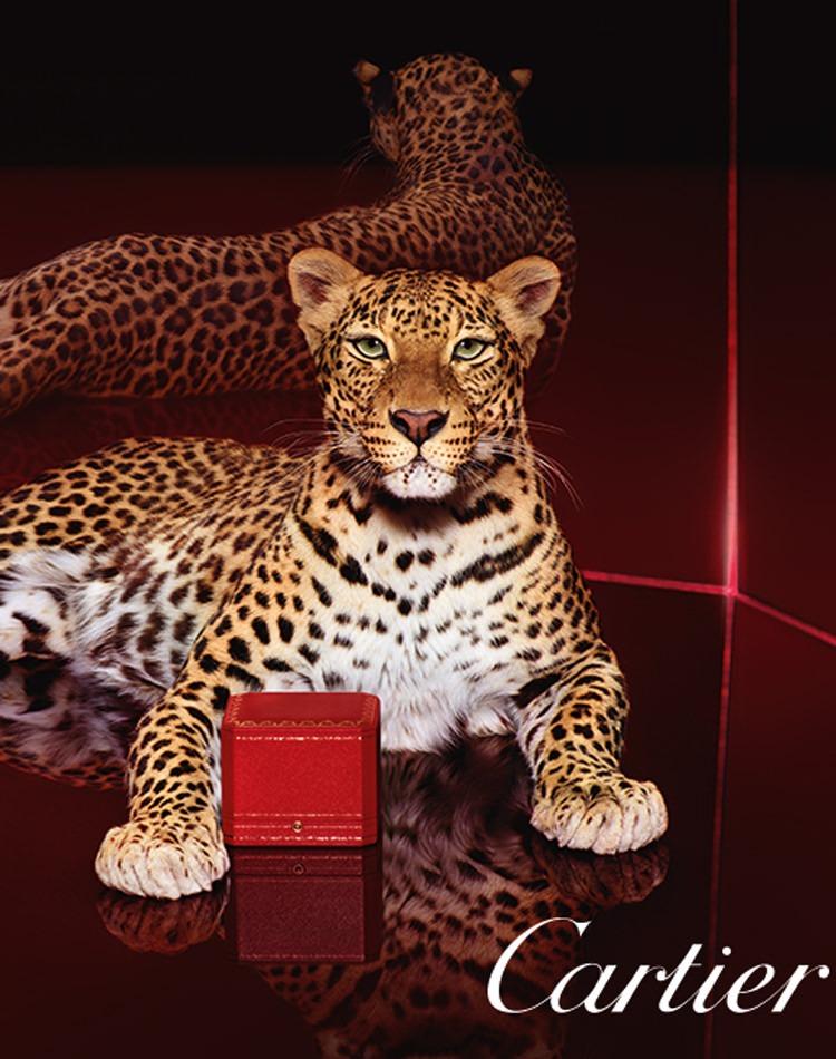 Image publicitaire, Cartier