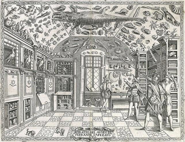 Palazzo Gravina Ferrante Imperato