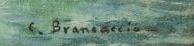 signature carlo brancaccio