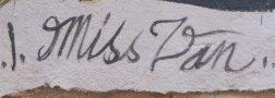 signature miss van