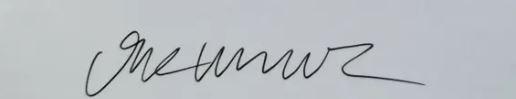 Signature Vik Muniz