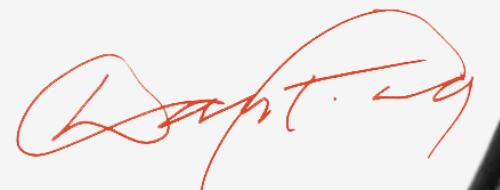 signature Dan FLAVIN