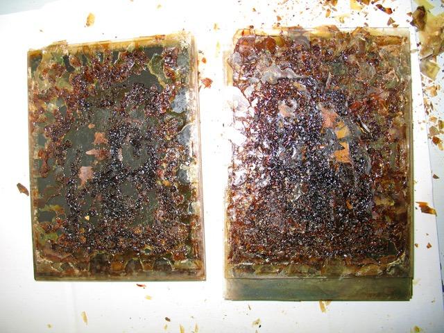 restauration expertise nitrates