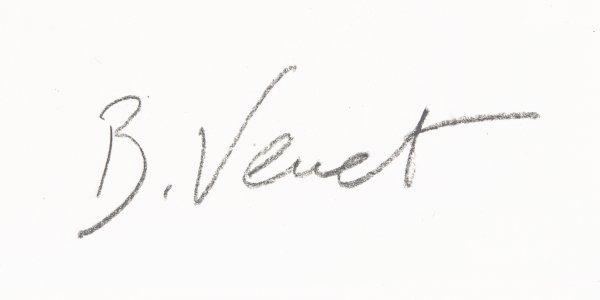 Signature Bernar Venet