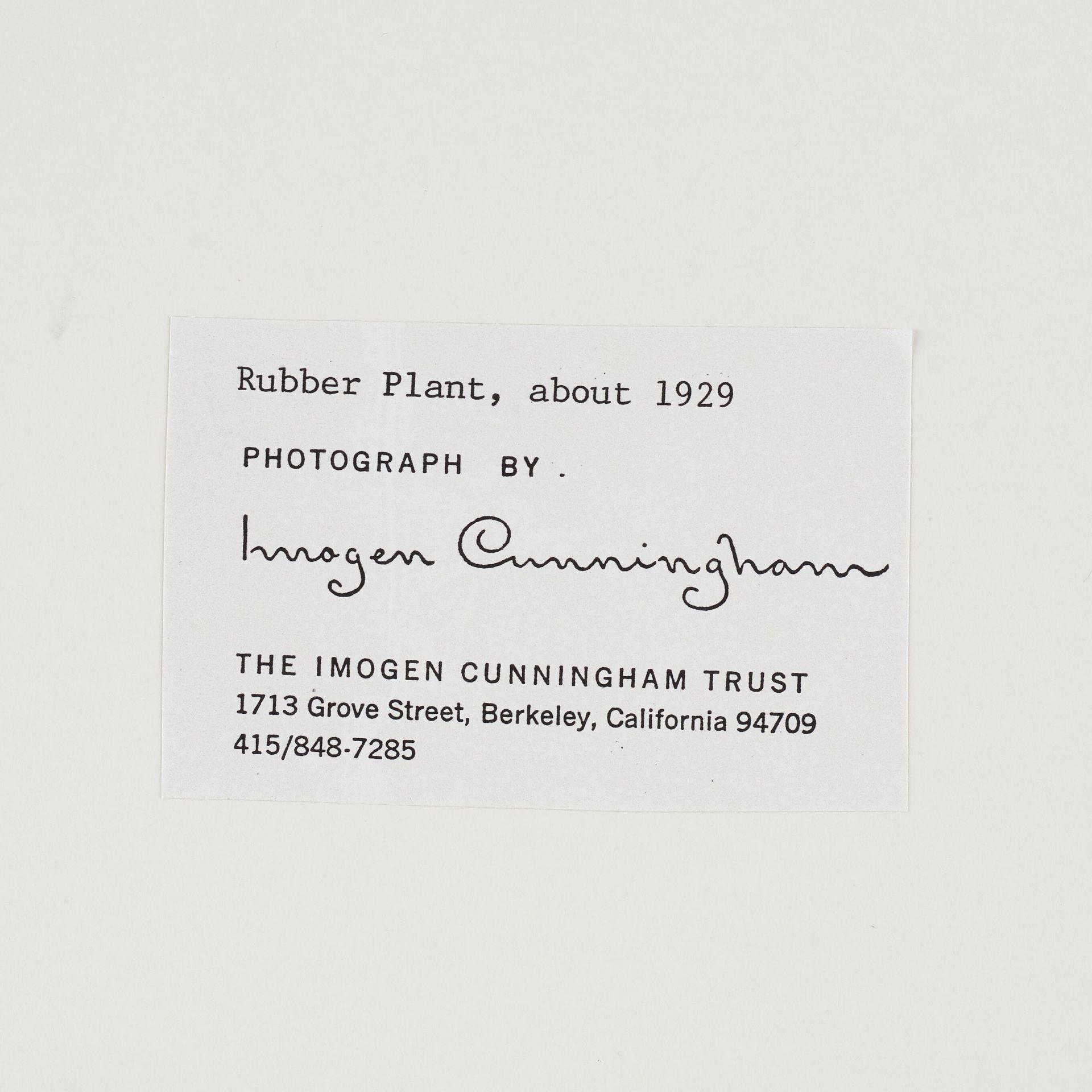 Signature Imogen Cunningham