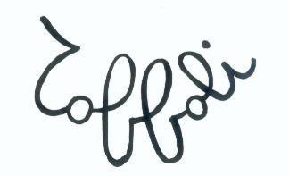 signature Louis TOFFOLI