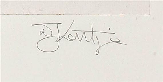 signature William KENTRIDGE