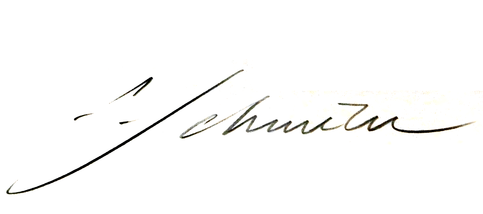 Signature François Schuiten